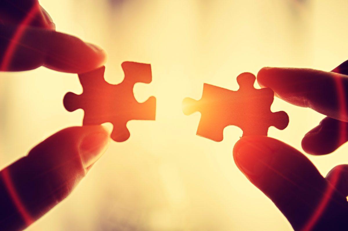 rete fra professionisti partnership